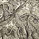 Autor: Peter KĽÚČIK, Ak. maliar, Názov diela: Pozdrav z pralesa, Technika: lept, Motív: ostatné nezaradené, Rozmery: 27x32 cm, Rok: 1993