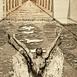Autor: Igor PIAČKA, Akademický maliar, Názov diela: Priamo, Technika: suchá ihla, Motív: figurálne, akty, Rozmery: 13x9 cm, Rok: 2006