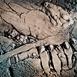 Autor: Vlado ORAVEC, akademický sochár, Názov diela: Zimné sny I, Technika: kamenina, Motív: figurálne, akty, Rozmery: 14,5x14,5 cm, Rok: 2012