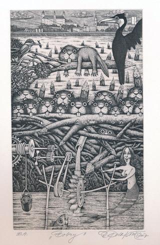 Dušan POLAKOVIČ, Akademický maliar - Bobry (2007), Technique: lept, Size: 25x15