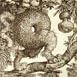 Autor: Peter KĽÚČIK, Ak. maliar, Názov diela: Keď príroda, Technika: lept, Motív: ostatné nezaradené, Rozmery: 17,5x14,5 cm, Rok: 1995